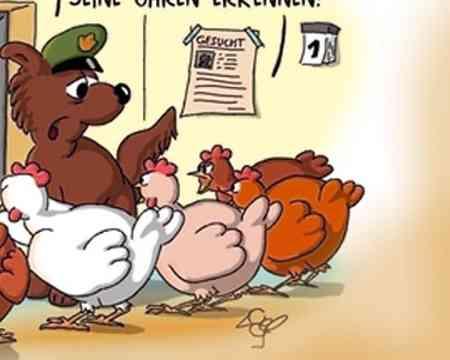Jedes Jahr wieder werden Hühner ihrer Eier beraubt.
